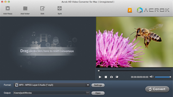 Sony HDR-PJ810 Video Converter